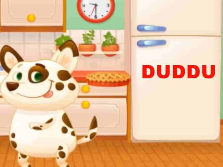 Duddu – My Virtual Pet Mod Apk 1.60 (Much Money) Free Download